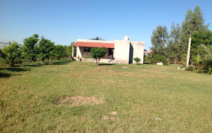 Foto de rancho en venta en  , flor azul, ahome, sinaloa, 1710110 No. 01