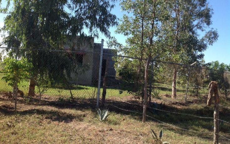 Foto de rancho en venta en lote 16, 17 y 18, flor azul sn, flor azul, ahome, sinaloa, 1710110 no 14