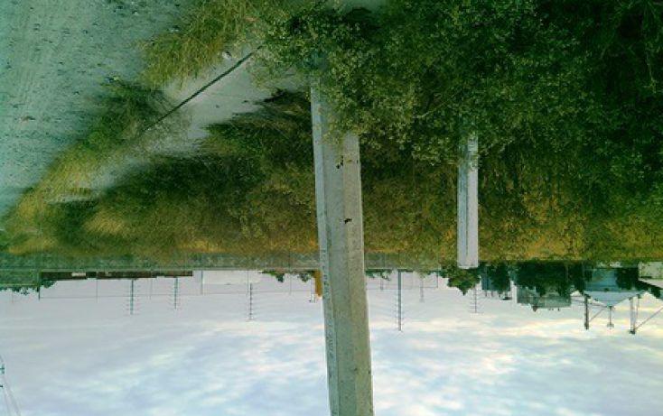 Foto de terreno habitacional en venta en lote 2 y 3 fraccion iia sn, santa maría, irapuato, guanajuato, 1715948 no 02