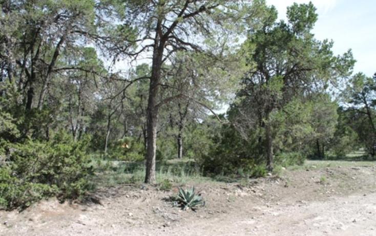 Foto de terreno habitacional en venta en  lote 5, nuncio, arteaga, coahuila de zaragoza, 384704 No. 04