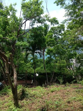 Foto de terreno habitacional en venta en lote a-93, lomas del mar a-93, santiago, manzanillo, colima, 1651903 No. 05
