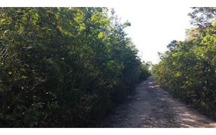 Foto de terreno habitacional en venta en lotes vero tulum , tulum centro, tulum, quintana roo, 1030511 No. 01
