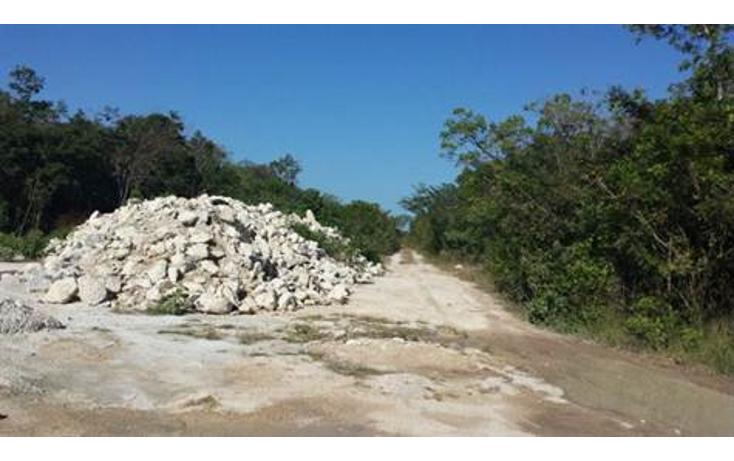 Foto de terreno habitacional en venta en lotes vero tulum , tulum centro, tulum, quintana roo, 1030511 No. 02