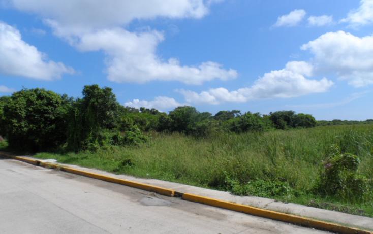 Foto de terreno habitacional en venta en  , luis donaldo colosio, tuxpan, veracruz de ignacio de la llave, 1208989 No. 04