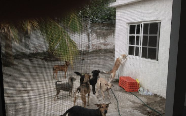 Foto de casa en venta en, luis echeverria álvarez, boca del río, veracruz, 1111629 no 06