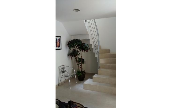 Foto de casa en venta en  , luz del barrio, xalapa, veracruz de ignacio de la llave, 1291535 No. 10