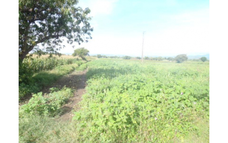 Foto de terreno comercial en venta en m, álvaro obregón, atlixco, puebla, 384715 no 05