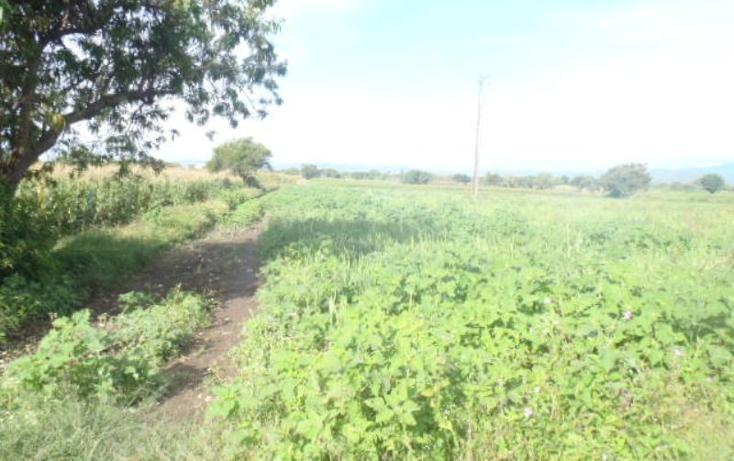Foto de terreno comercial en venta en m m, la sabana (san juan la sabana), atlixco, puebla, 384715 No. 04