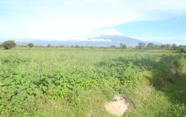 Foto de terreno comercial en venta en m m, la sabana (san juan la sabana), atlixco, puebla, 384715 No. 05