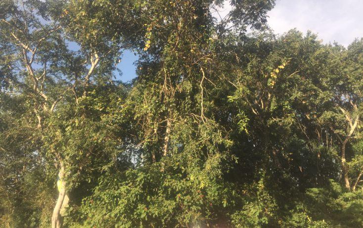 Foto de terreno habitacional en venta en, macario gómez, tulum, quintana roo, 1626738 no 01