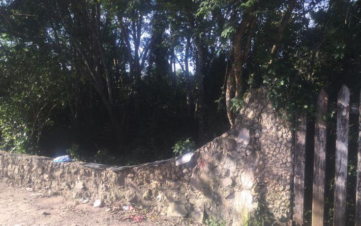 Foto de terreno habitacional en venta en, macario gómez, tulum, quintana roo, 1626738 no 02