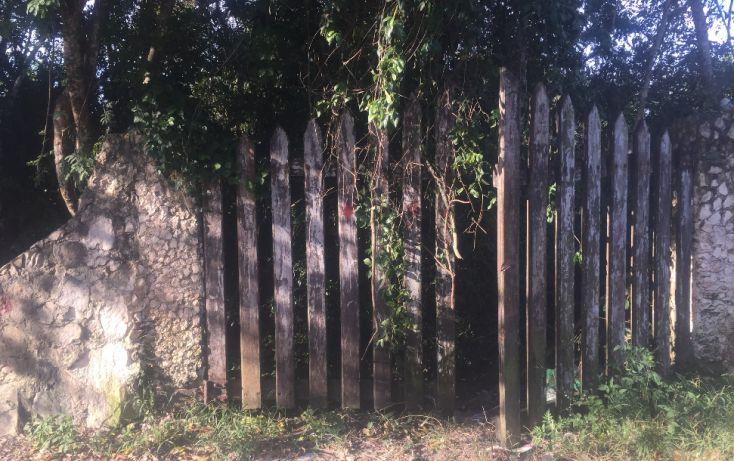 Foto de terreno habitacional en venta en, macario gómez, tulum, quintana roo, 1626738 no 03