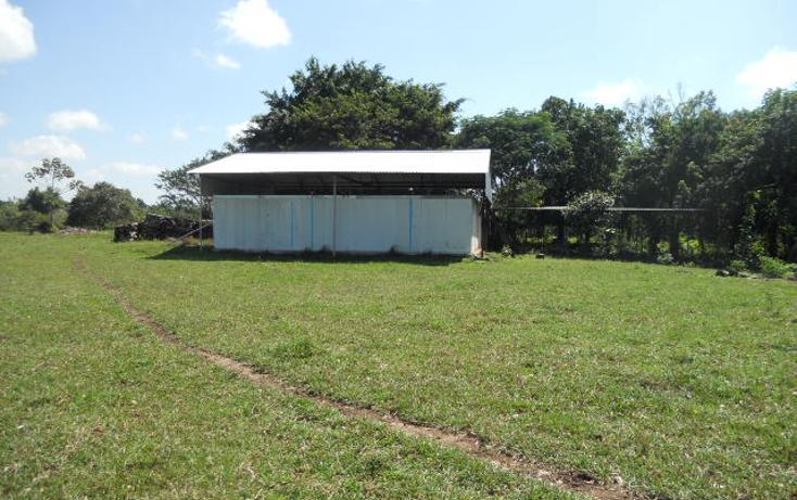 Foto de rancho en venta en  , macuspana centro, macuspana, tabasco, 1696846 No. 02