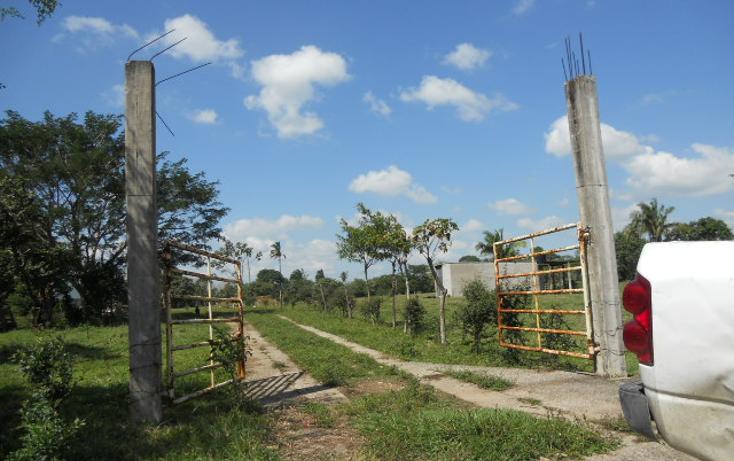 Foto de rancho en venta en  , macuspana centro, macuspana, tabasco, 1696846 No. 04
