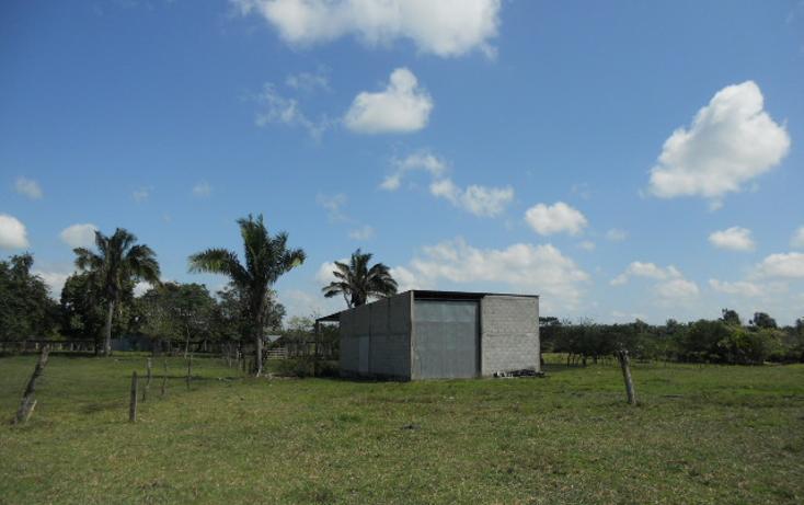 Foto de rancho en venta en  , macuspana centro, macuspana, tabasco, 1696846 No. 06