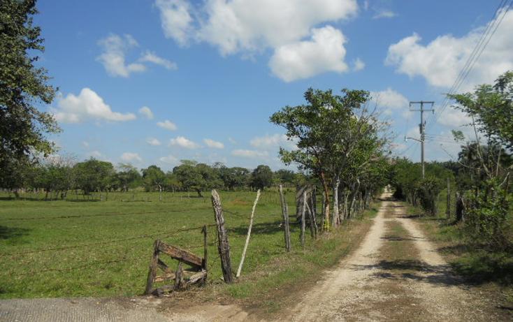 Foto de rancho en venta en  , macuspana centro, macuspana, tabasco, 1696846 No. 07