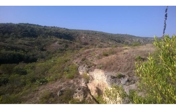 Foto de terreno habitacional en venta en  , madho corrales, alfajayucan, hidalgo, 1073945 No. 01