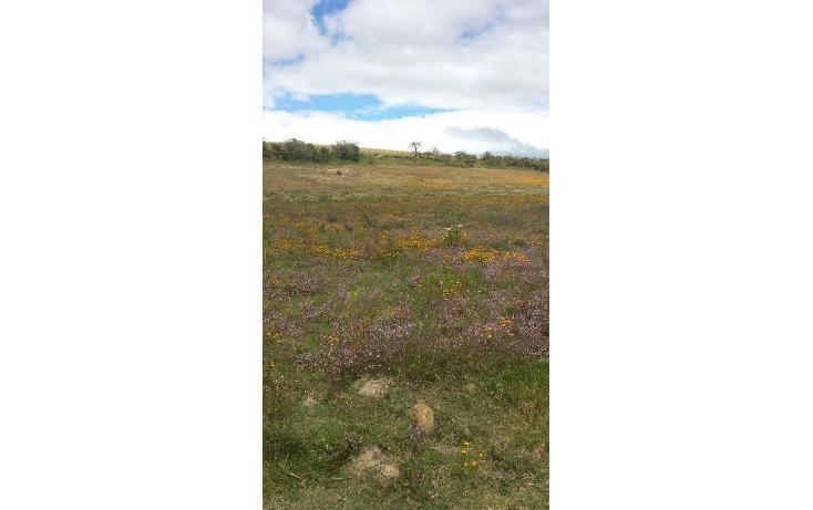 Foto de terreno habitacional en venta en  , magdalena apasco, magdalena apasco, oaxaca, 448750 No. 02
