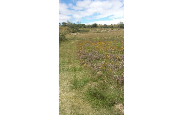 Foto de terreno habitacional en venta en  , magdalena apasco, magdalena apasco, oaxaca, 448750 No. 03