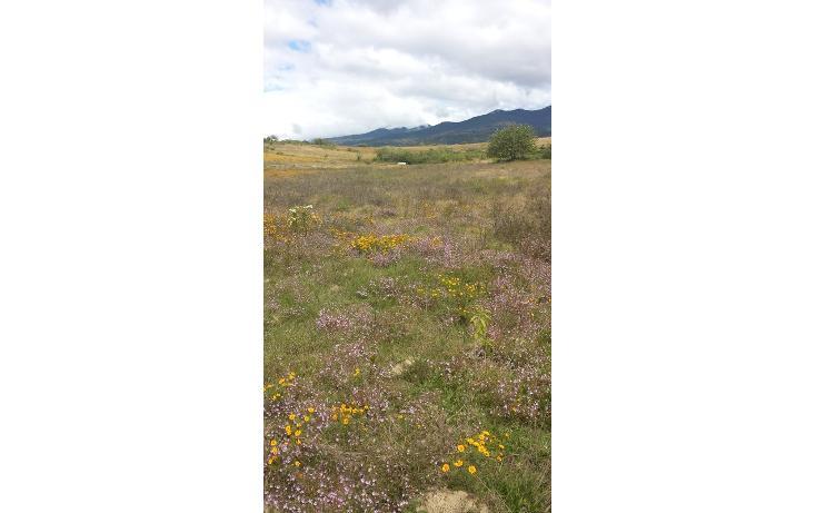 Foto de terreno habitacional en venta en  , magdalena apasco, magdalena apasco, oaxaca, 448750 No. 05