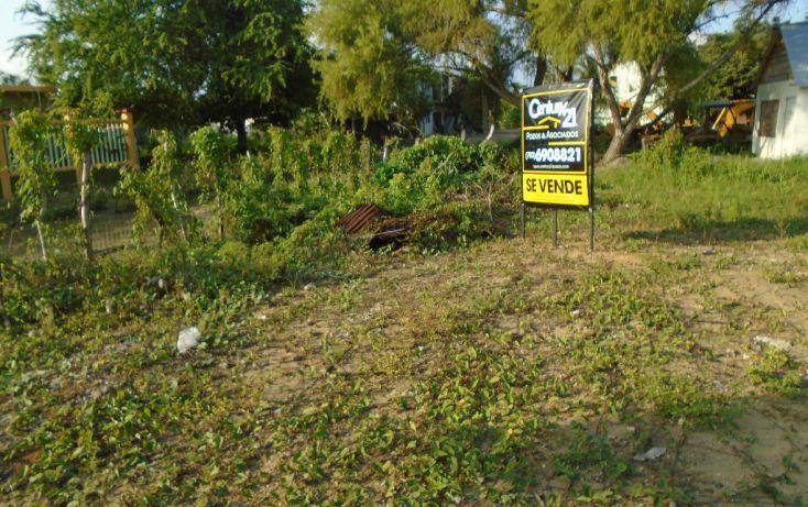 Foto de terreno habitacional en venta en magdalena mixuca, adolfo ruiz cortines, tuxpan, veracruz, 1721014 no 02