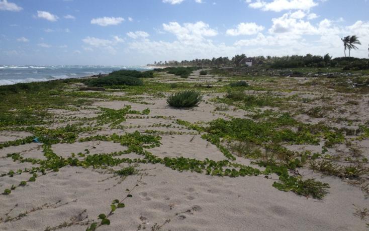 Foto de terreno comercial en venta en  , mahahual, othón p. blanco, quintana roo, 1499581 No. 02