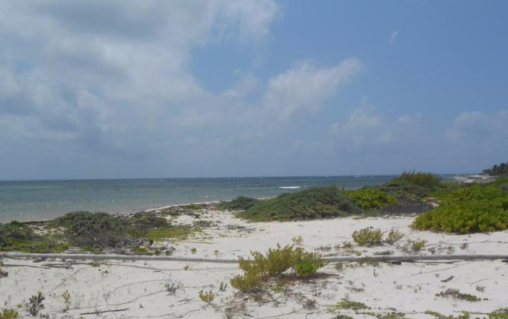 Foto de terreno comercial en venta en  , mahahual, othón p. blanco, quintana roo, 1499581 No. 09