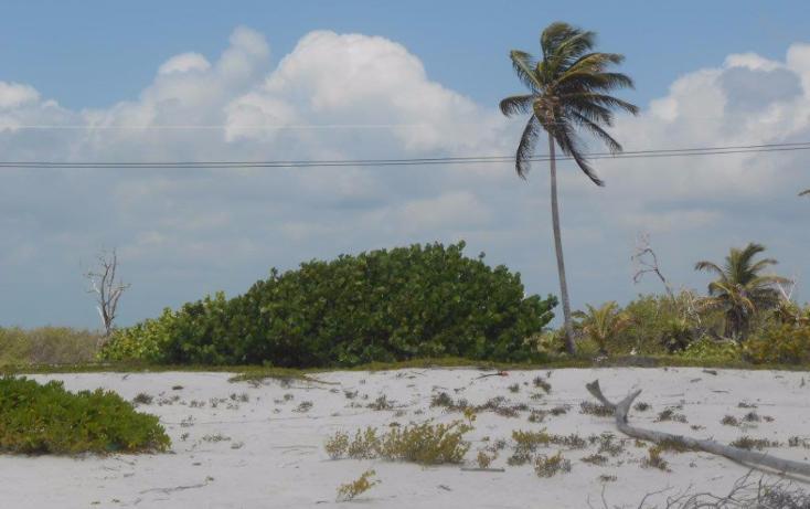 Foto de terreno comercial en venta en  , mahahual, othón p. blanco, quintana roo, 1499581 No. 12