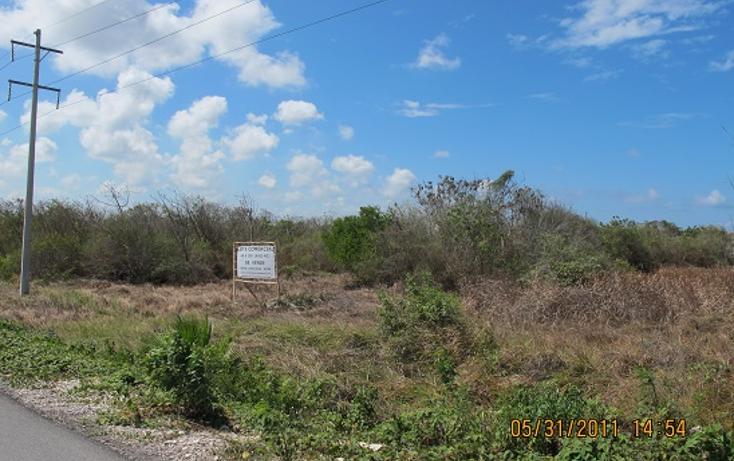 Foto de terreno comercial en venta en  , mahahual, othón p. blanco, quintana roo, 1500209 No. 06