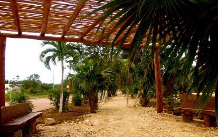 Foto de terreno habitacional en venta en, mahahual, othón p blanco, quintana roo, 1501545 no 06