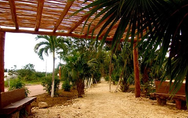 Foto de terreno habitacional en venta en  , mahahual, othón p. blanco, quintana roo, 1502851 No. 04