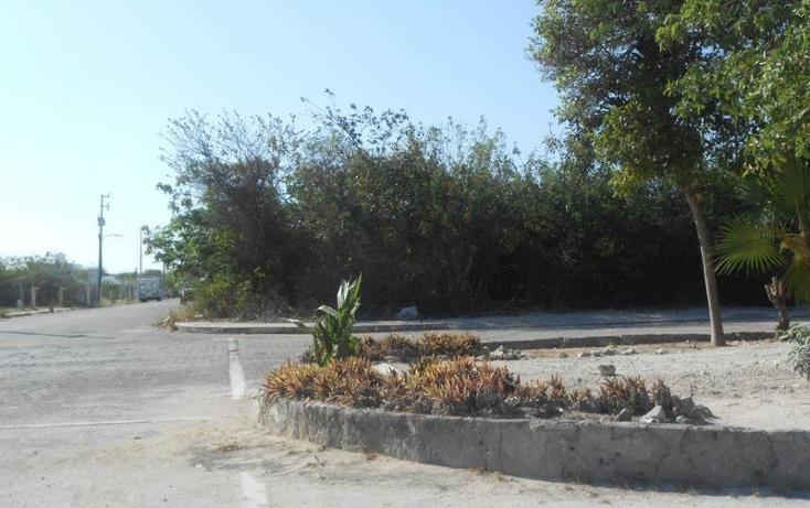 Foto de terreno habitacional en venta en  , mahahual, oth?n p. blanco, quintana roo, 1862930 No. 05