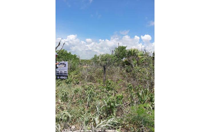 Foto de terreno habitacional en venta en  , mahahual, oth?n p. blanco, quintana roo, 1862988 No. 05