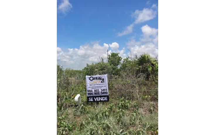 Foto de terreno habitacional en venta en  , mahahual, oth?n p. blanco, quintana roo, 1862988 No. 06