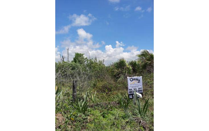 Foto de terreno habitacional en venta en  , mahahual, oth?n p. blanco, quintana roo, 1862988 No. 07