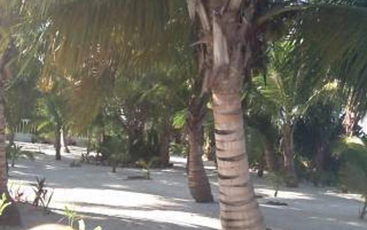Foto de casa en venta en  , mahahual, othón p. blanco, quintana roo, 1863030 No. 08
