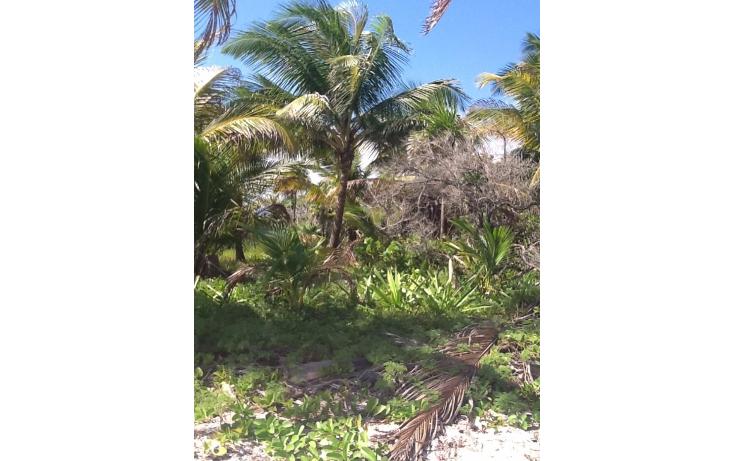 Foto de terreno habitacional en venta en  , mahahual, oth?n p. blanco, quintana roo, 1863034 No. 01