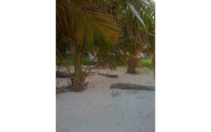 Foto de terreno habitacional en venta en  , mahahual, oth?n p. blanco, quintana roo, 1863054 No. 01
