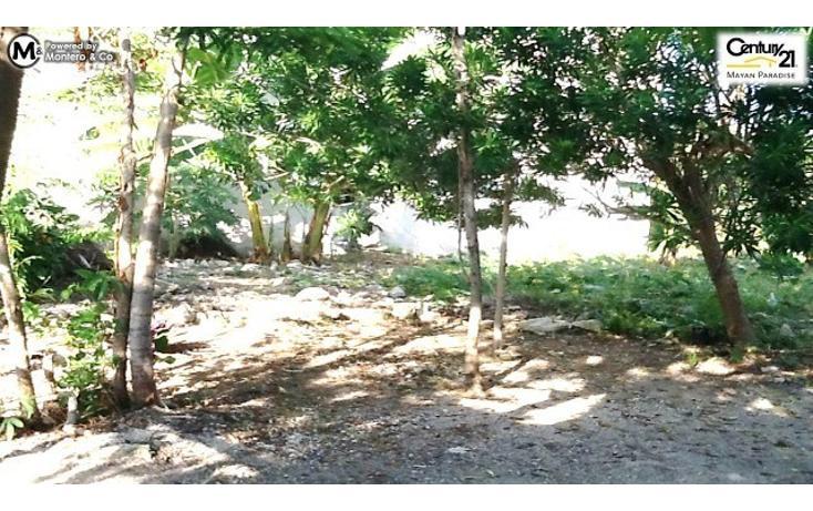 Foto de casa en venta en  , mahahual, othón p. blanco, quintana roo, 1863064 No. 06
