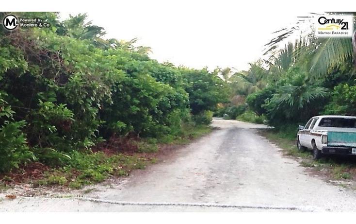 Foto de terreno habitacional en venta en  , mahahual, othón p. blanco, quintana roo, 1863068 No. 03