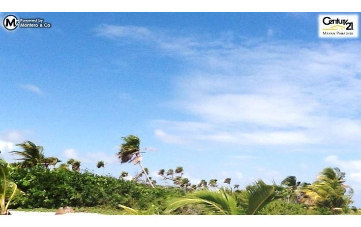 Foto de terreno habitacional en venta en  , mahahual, othón p. blanco, quintana roo, 1863068 No. 07