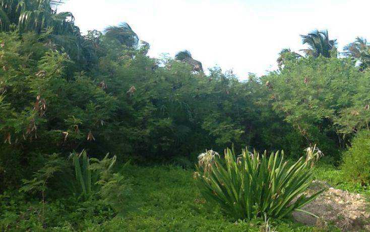 Foto de terreno habitacional en venta en, mahahual, othón p blanco, quintana roo, 1863086 no 02