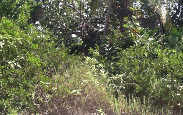 Foto de terreno habitacional en venta en, mahahual, othón p blanco, quintana roo, 1962703 no 08