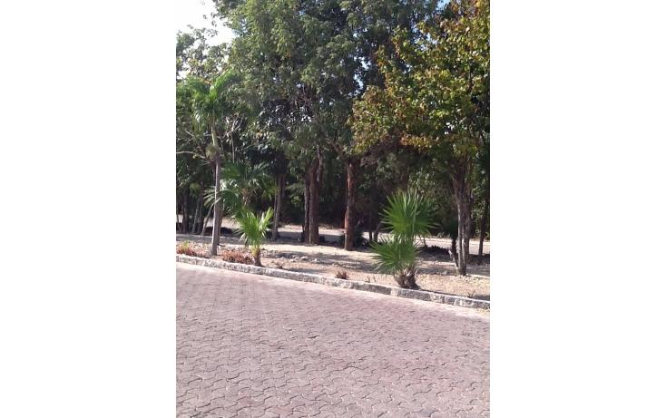 Foto de terreno habitacional en venta en  , mahahual, oth?n p. blanco, quintana roo, 2044757 No. 03