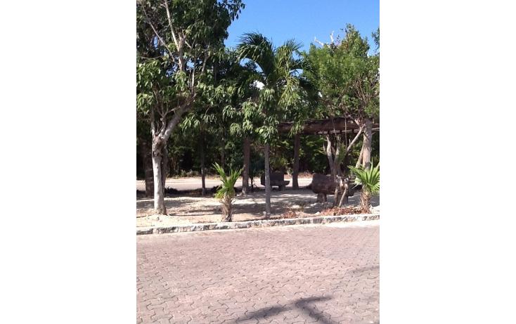 Foto de terreno habitacional en venta en  , mahahual, oth?n p. blanco, quintana roo, 2044757 No. 04