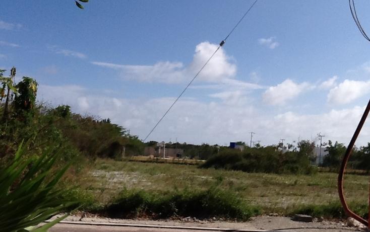 Foto de terreno habitacional en venta en  , mahahual, oth?n p. blanco, quintana roo, 2044757 No. 07