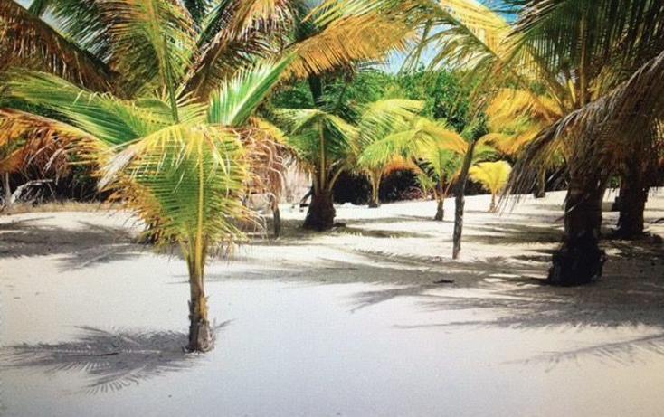 Foto de terreno habitacional en venta en  , mahahual, othón p. blanco, quintana roo, 3427649 No. 03