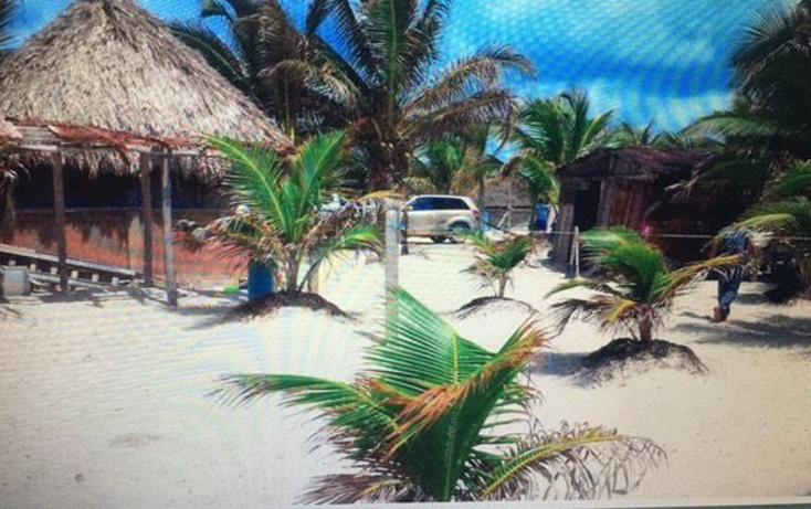 Foto de terreno habitacional en venta en  , mahahual, othón p. blanco, quintana roo, 3427649 No. 05