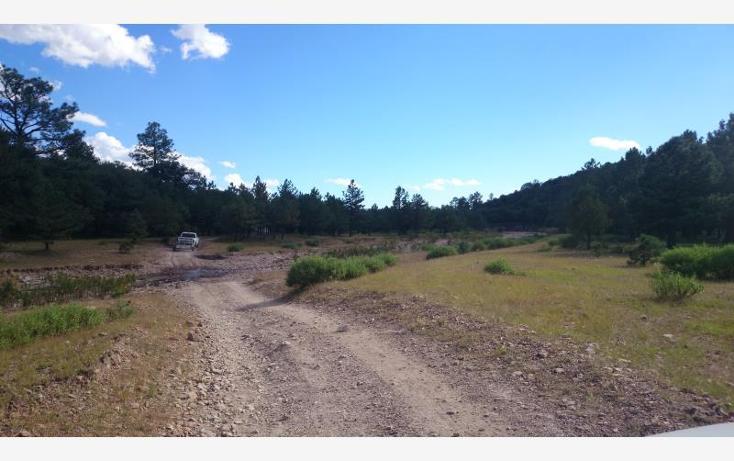 Foto de terreno habitacional en venta en  , majalca, chihuahua, chihuahua, 610676 No. 11