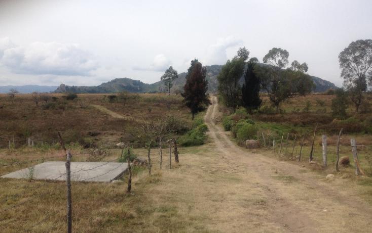 Foto de terreno comercial en venta en  , malinaltenango, ixtapan de la sal, méxico, 1201265 No. 02
